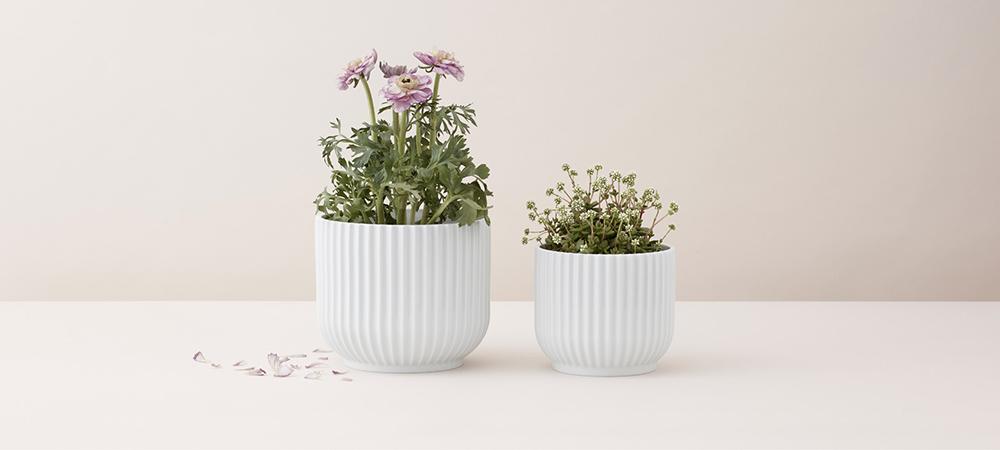 Flowerpot by Rosendahl Design Group